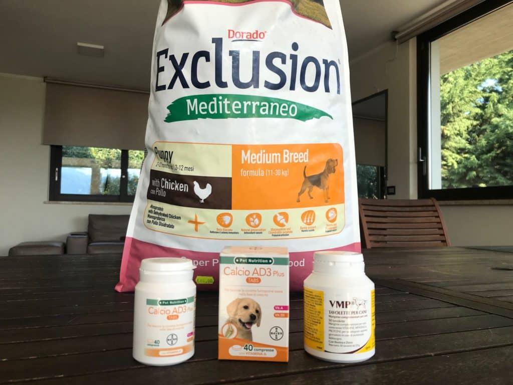 vitamine-calcio-gravidanza-cane