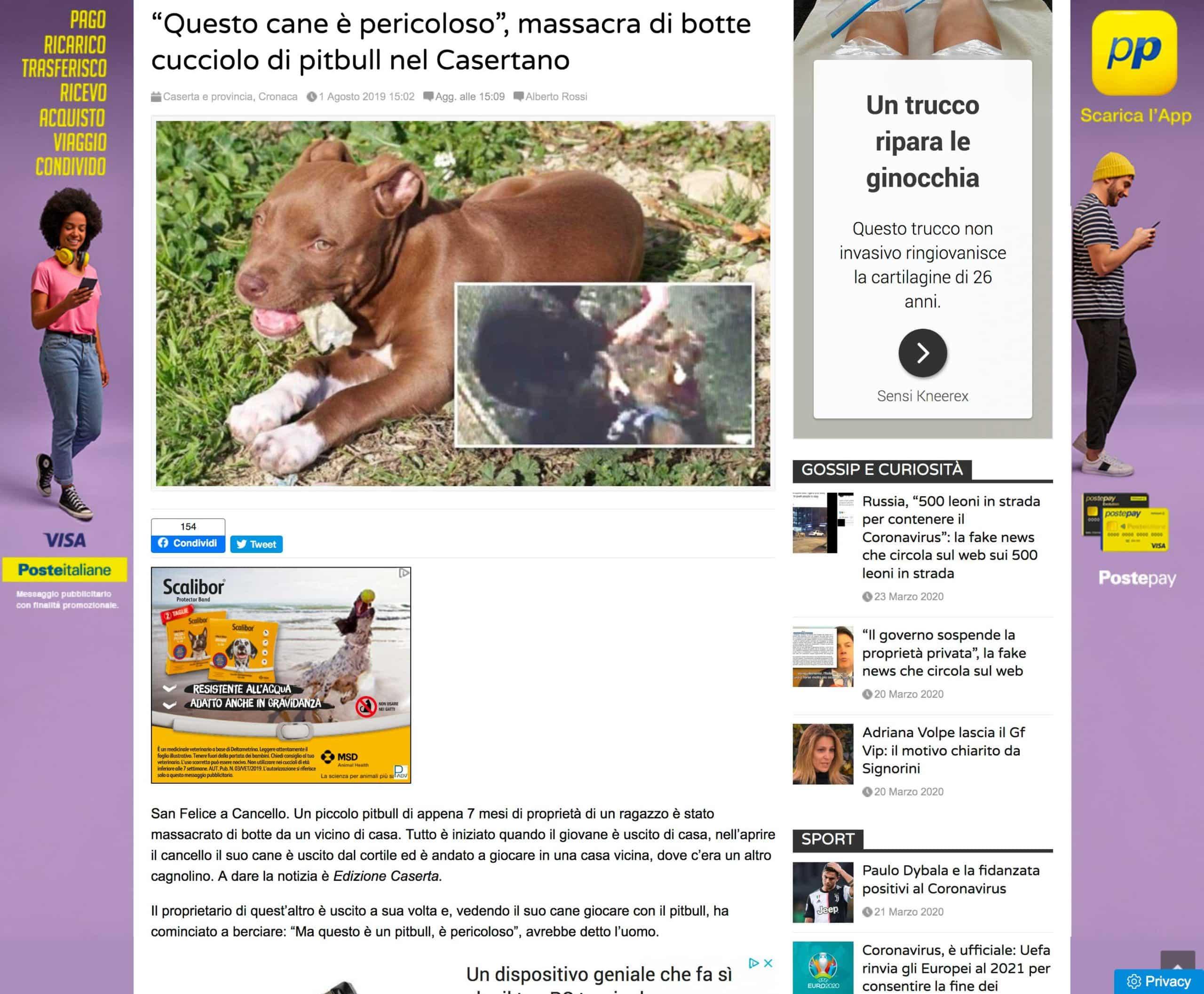 Foto del nostro Blu rubata dal quotidiano teleclubitalia.it