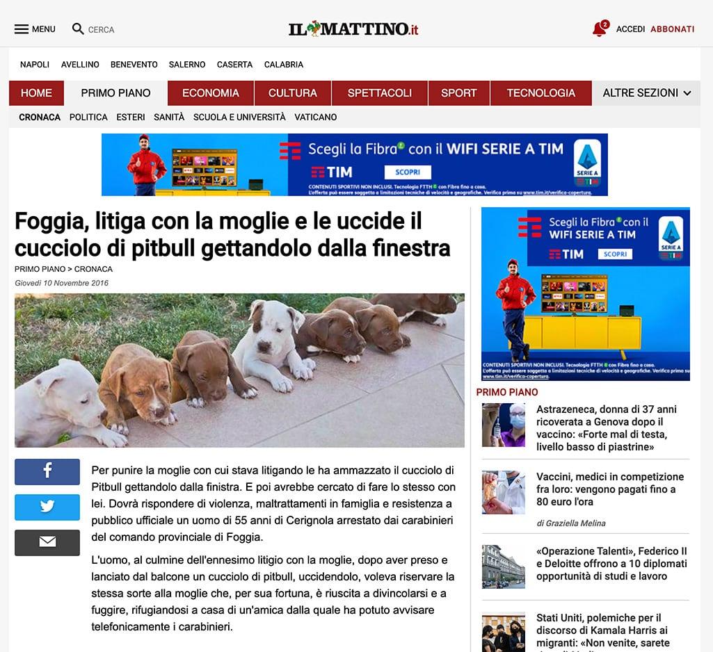 screenshot articolo pitbull il mattino